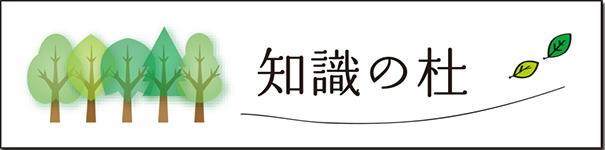 chishikinomori